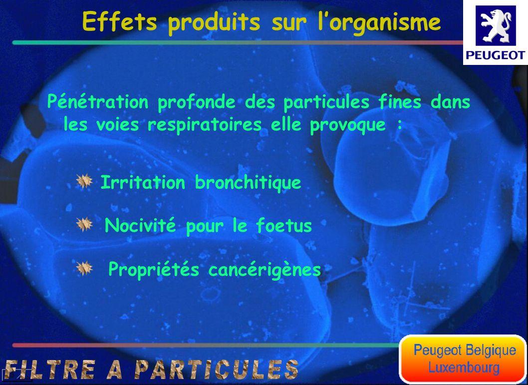 Effets produits sur lorganisme Irritation bronchitique Pénétration profonde des particules fines dans les voies respiratoires elle provoque : Propriét