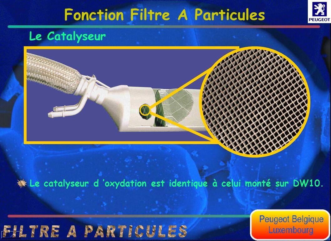 Le Catalyseur Le catalyseur d oxydation est identique à celui monté sur DW10. Fonction Filtre A Particules