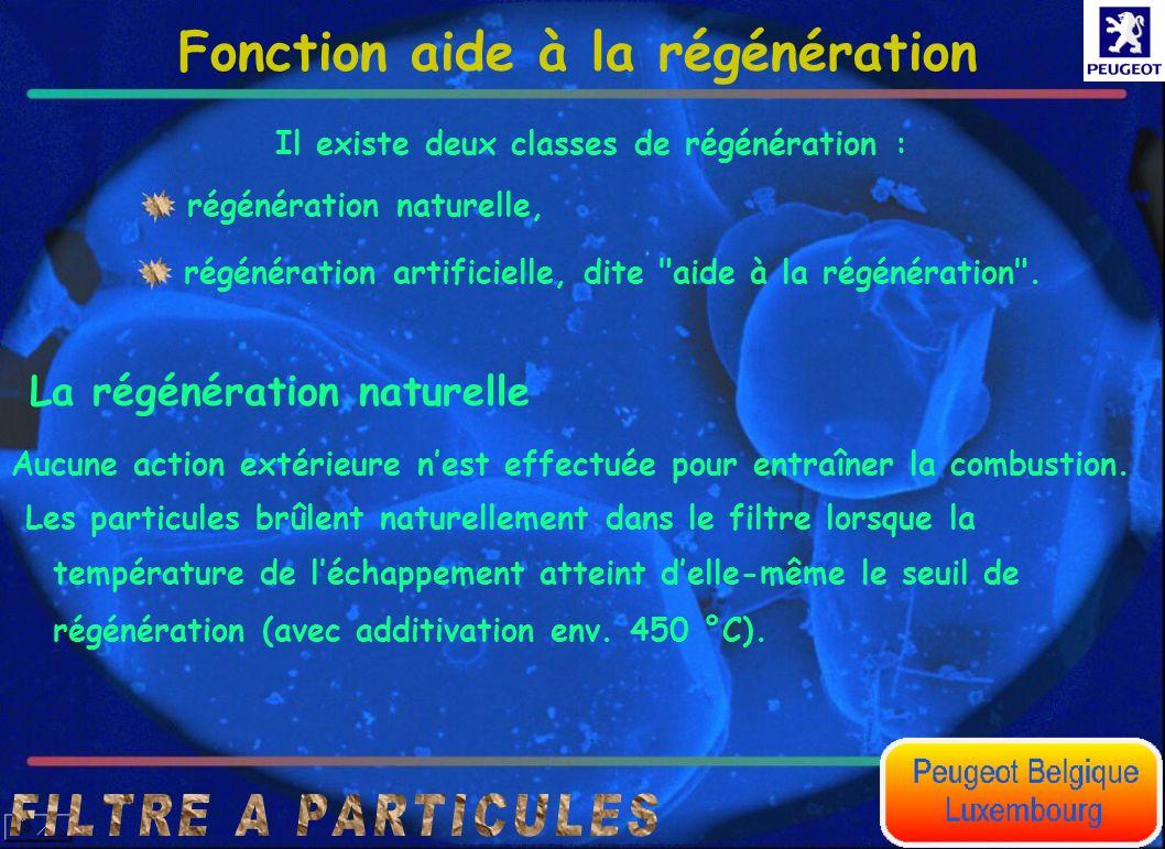 La régénération naturelle Fonction aide à la régénération Il existe deux classes de régénération : régénération naturelle, régénération artificielle,
