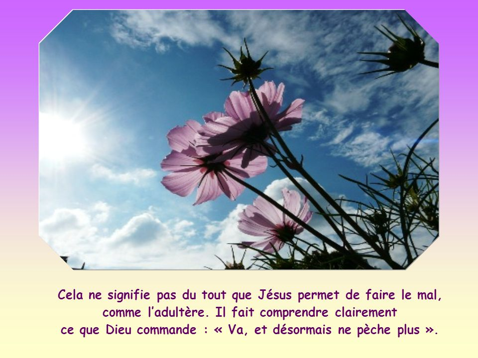 « Que celui d entre vous qui n a jamais péché lui jette la première pierre » (Jn 8,7).
