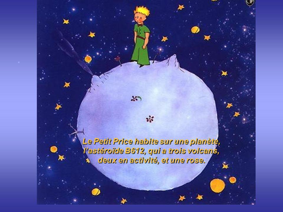 .. Le Petit Price habite sur une planète, lastéroïde B612, qui a trois volcans, deux en activité, et une rose.