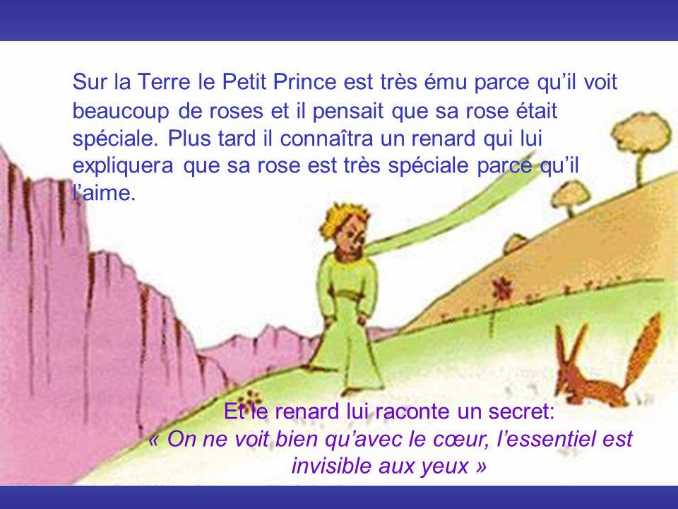 . Sur la Terre le Petit Prince est très ému parce quil voit beaucoup de roses et il pensait que sa rose était spéciale. Plus tard il connaîtra un rena