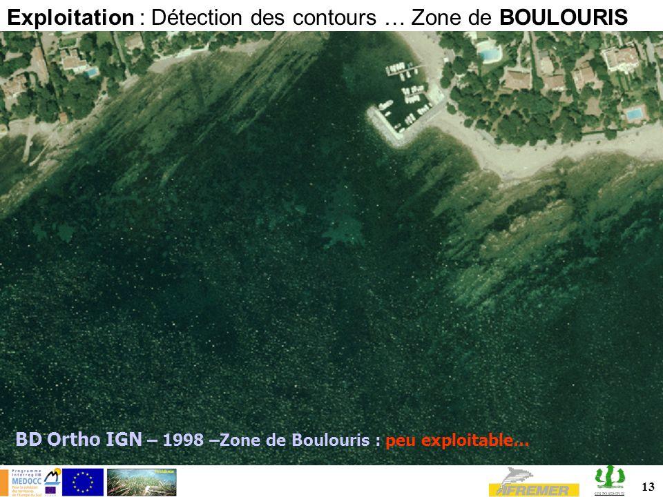 13 BD Ortho IGN – 1998 –Zone de Boulouris : peu exploitable… Exploitation : Détection des contours … Zone de BOULOURIS