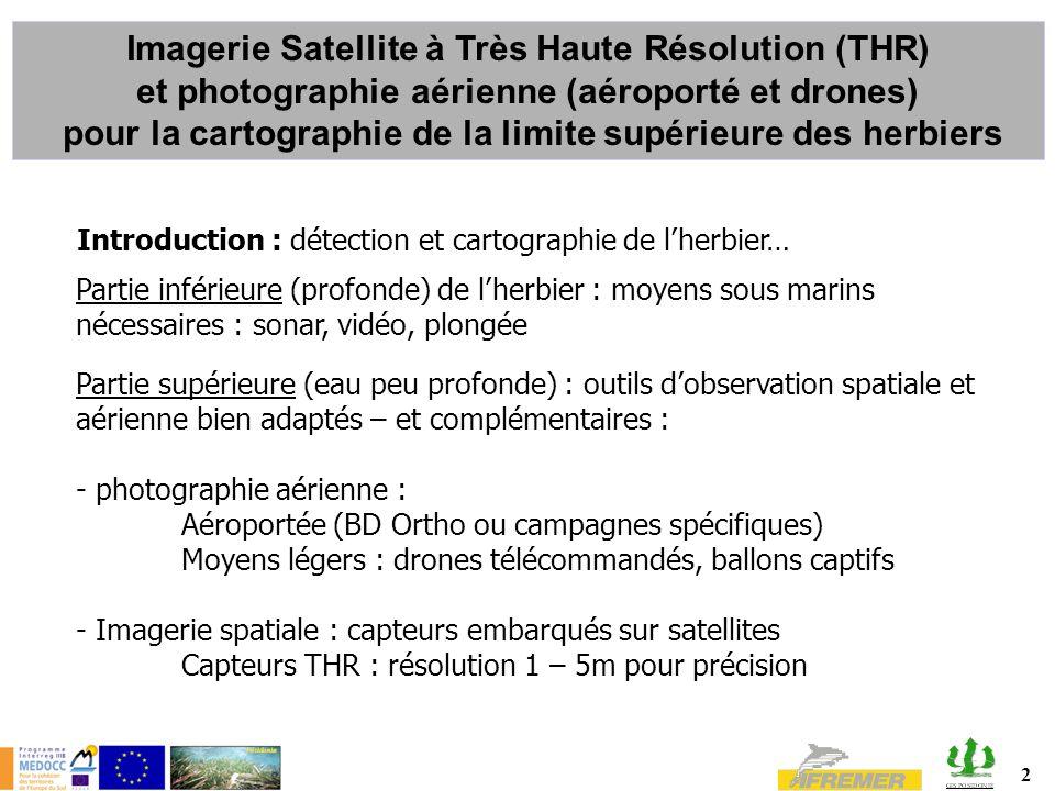 2 Introduction : détection et cartographie de lherbier… Partie inférieure (profonde) de lherbier : moyens sous marins nécessaires : sonar, vidéo, plon