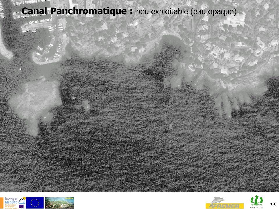 23 Canal Panchromatique : peu exploitable (eau opaque)