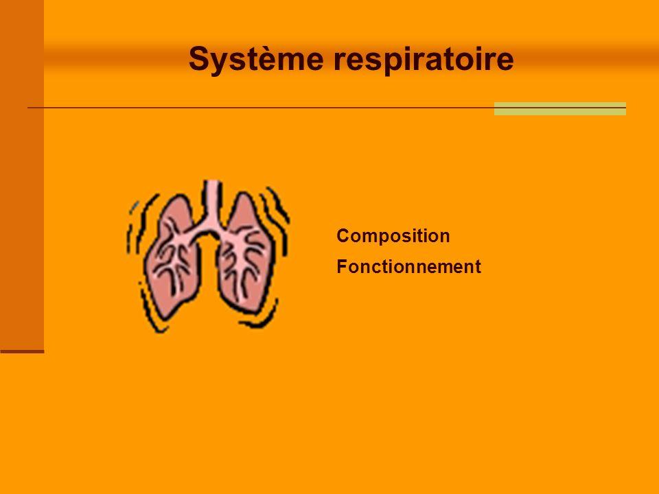 Système respiratoire Objectifs : Connaître pour le système respiratoire : - Les paramètres respiratoires pour un adulte - Ses fonctions - Les organes qui le compose - Le mécanisme inspiration / expiration - Le contrôle de la respiration - Les échanges gazeux