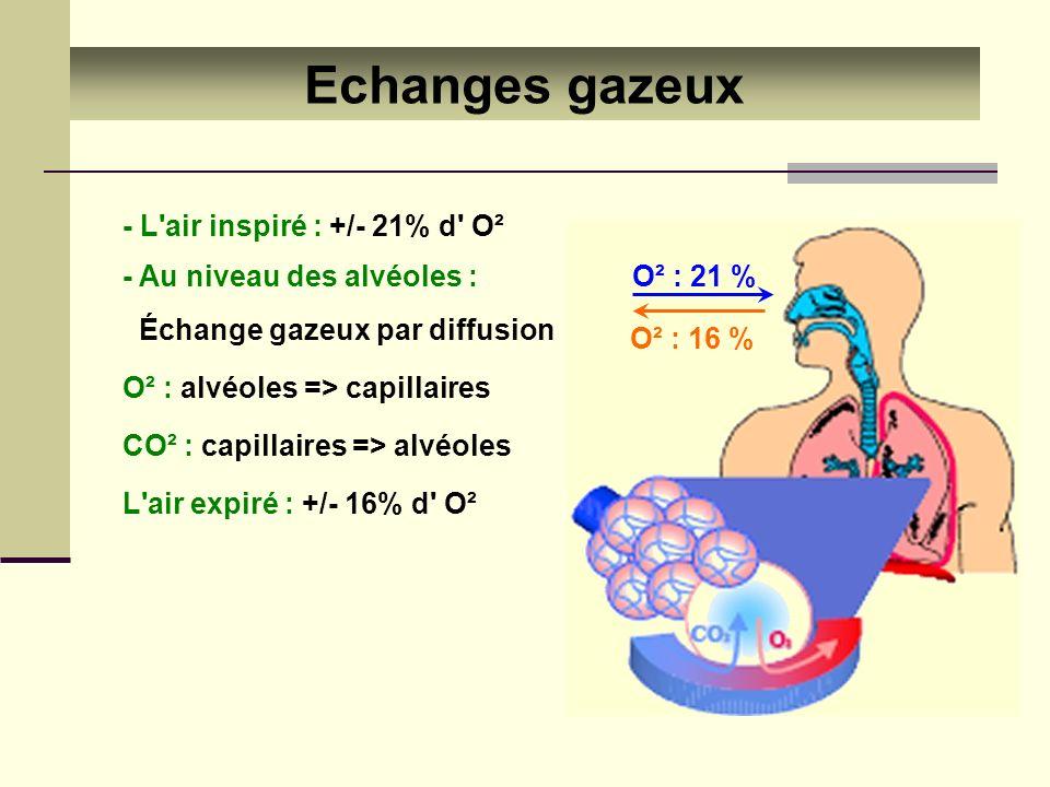 Echanges gazeux - L'air inspiré : +/- 21% d' O² - Au niveau des alvéoles : Échange gazeux par diffusion CO² : capillaires => alvéoles O² : alvéoles =>