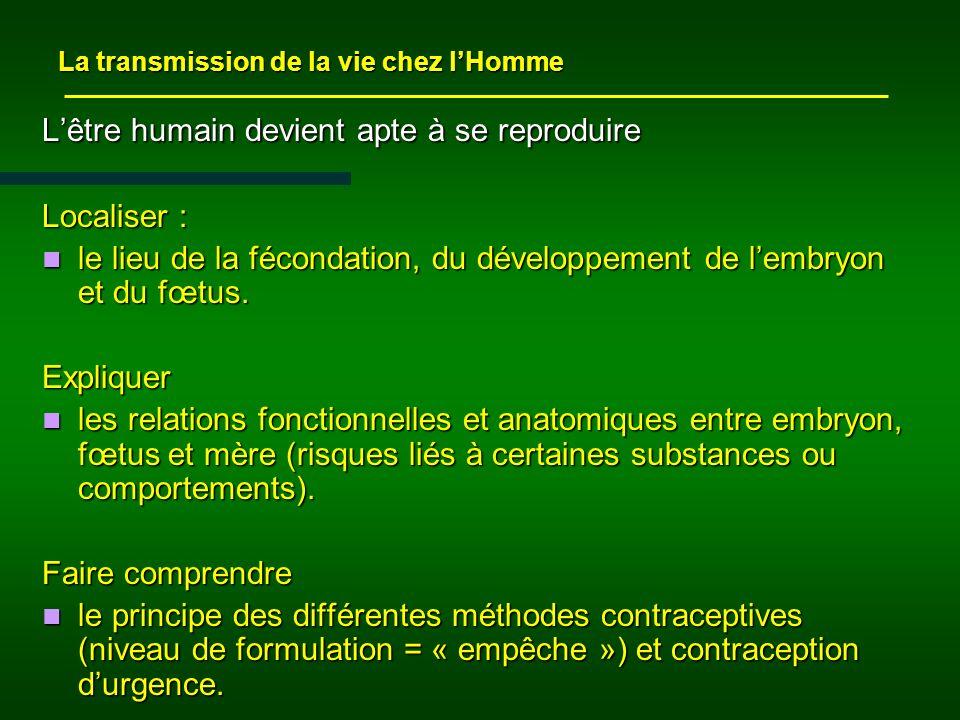 Lêtre humain devient apte à se reproduire Localiser : le lieu de la fécondation, du développement de lembryon et du fœtus.