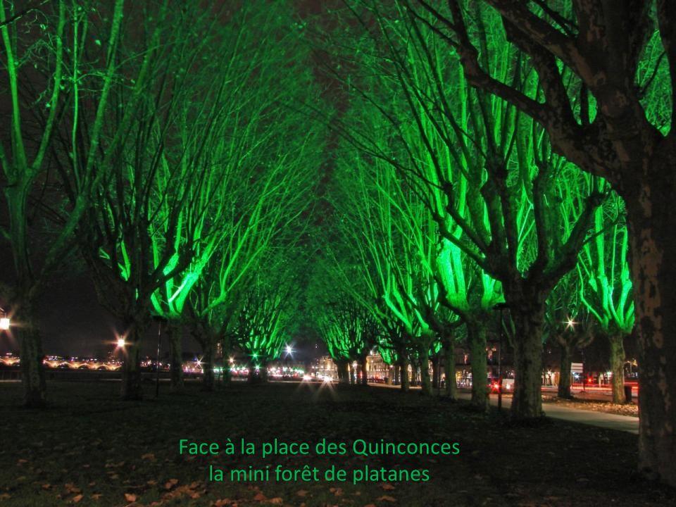les quais de la rive gauche de la Garonne. Face au cours du Médoc Le port de Bordeaux, ou « Port De La Lune » Cette appellation est dûe à sa forme en
