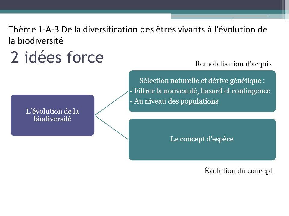 2 idées force Lévolution de la biodiversité Sélection naturelle et dérive génétique : - Filtrer la nouveauté, hasard et contingence - Au niveau des populations Le concept despèce Thème 1-A-3 De la diversification des êtres vivants à l évolution de la biodiversité Remobilisation dacquis Évolution du concept