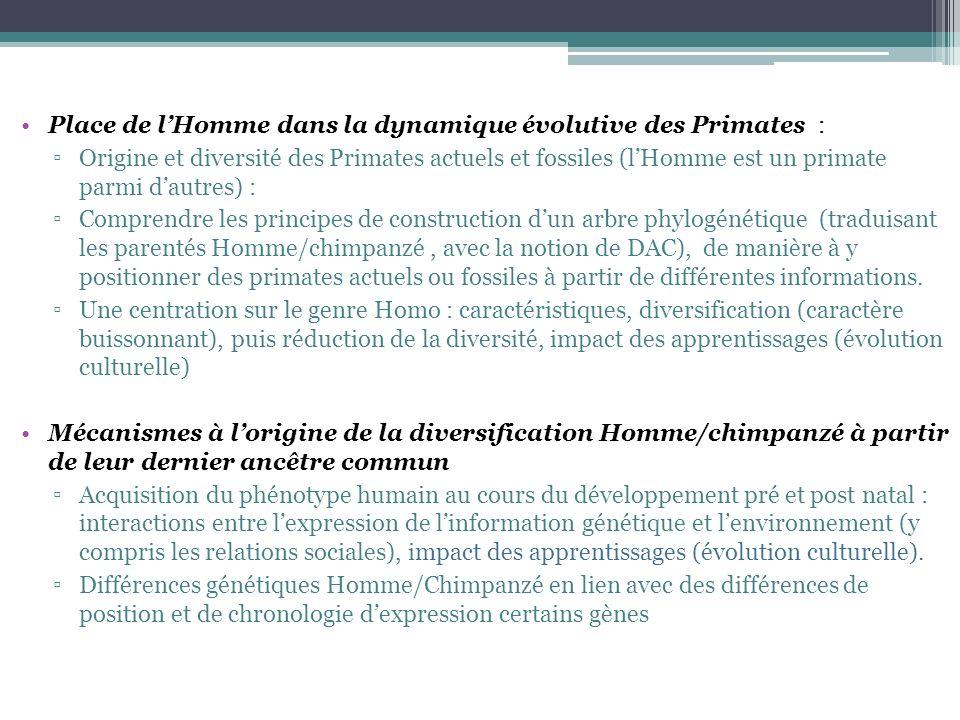 Place de lHomme dans la dynamique évolutive des Primates : Origine et diversité des Primates actuels et fossiles (lHomme est un primate parmi dautres)
