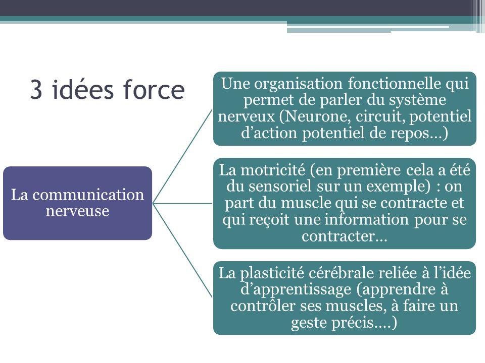 3 idées force La communication nerveuse Une organisation fonctionnelle qui permet de parler du système nerveux (Neurone, circuit, potentiel daction po