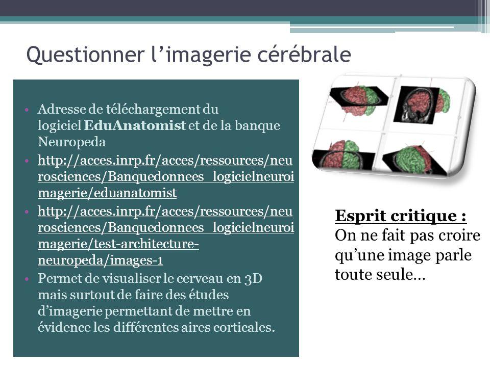 Adresse de téléchargement du logiciel EduAnatomist et de la banque Neuropeda http://acces.inrp.fr/acces/ressources/neu rosciences/Banquedonnees_logici