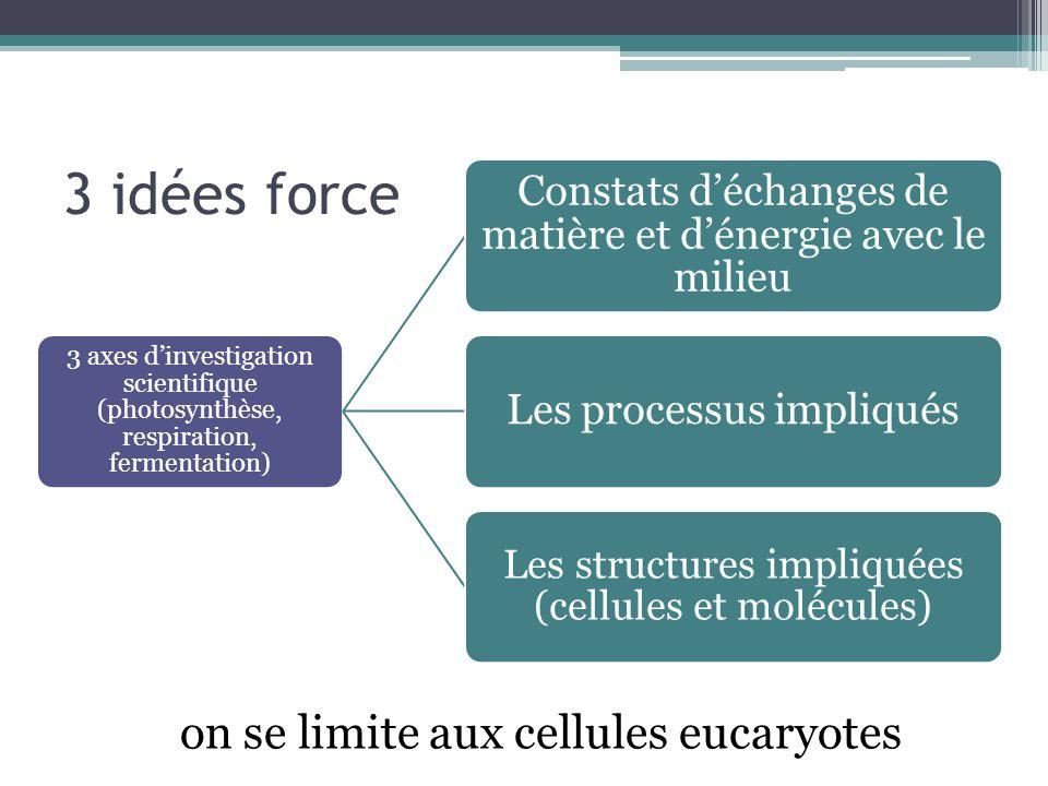 3 idées force 3 axes dinvestigation scientifique (photosynthèse, respiration, fermentation) Constats déchanges de matière et dénergie avec le milieu Les processus impliqués Les structures impliquées (cellules et molécules) on se limite aux cellules eucaryotes