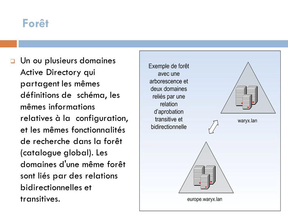 Forêt Un ou plusieurs domaines Active Directory qui partagent les mêmes définitions de schéma, les mêmes informations relatives à la configuration, et