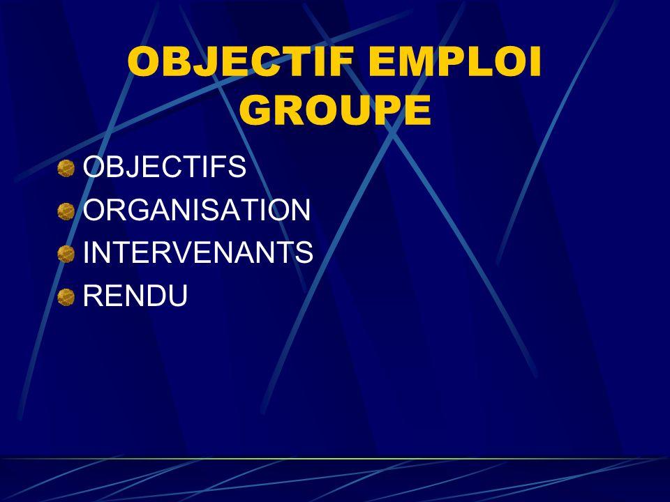 OBJECTIF EMPLOI INDIVIDUEL OBJECTIFS ORGANISATION INTERVENANTS RENDU