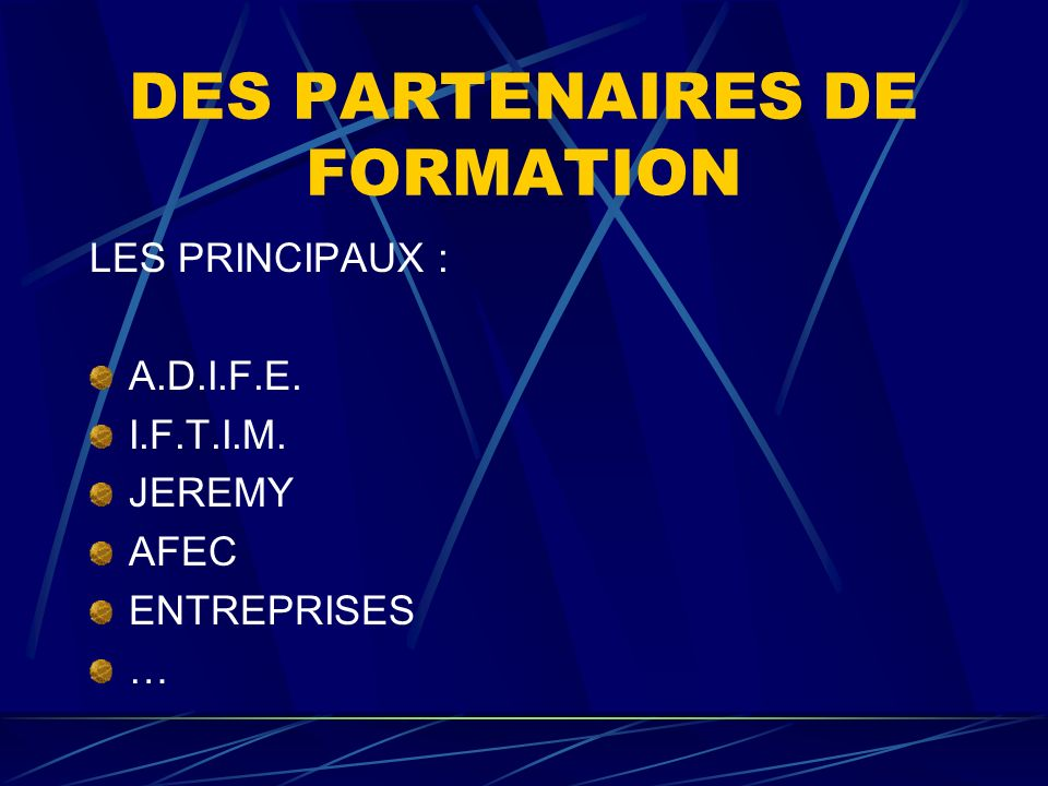 2003 1890 STAGIAIRES SIFE 76 °/° de placement OEI 70% de placement Assedic 82 % de placement Passerelles entreprises 83 % de placement