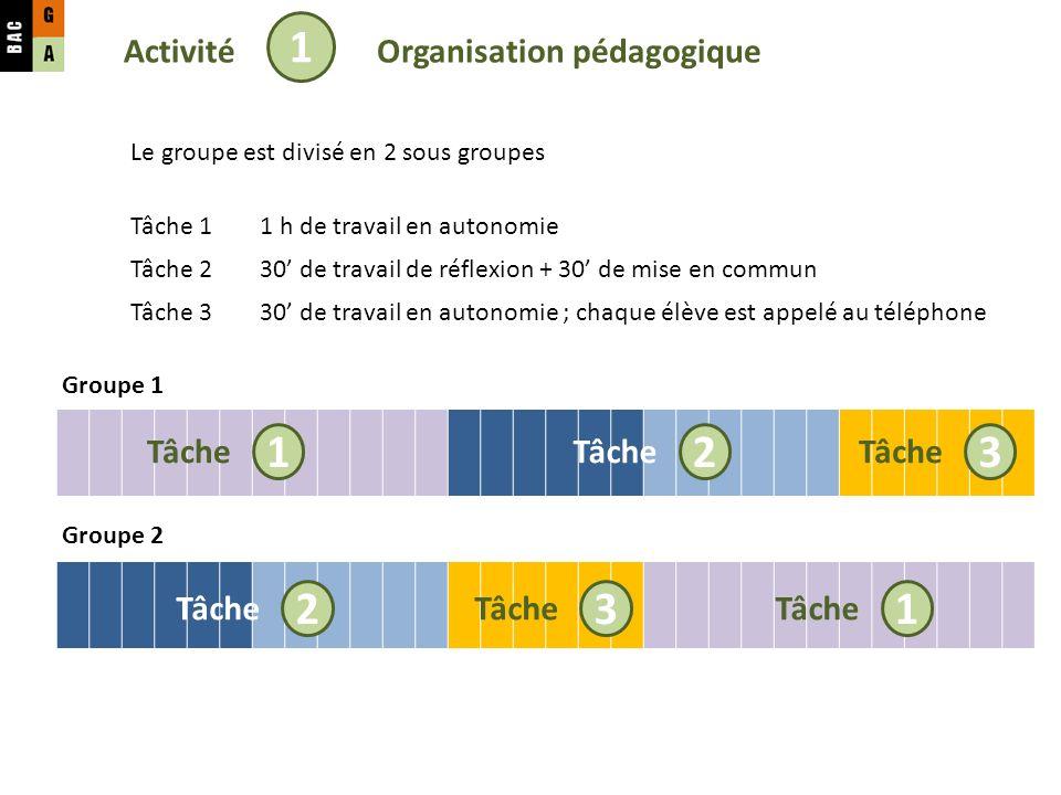 Activité 1 Tâche 1 2 Organisation pédagogique Groupe 1 Groupe 2 Tâche 3 Le groupe est divisé en 2 sous groupes Tâche 11 h de travail en autonomie Tâche 230 de travail de réflexion + 30 de mise en commun Tâche 330 de travail en autonomie ; chaque élève est appelé au téléphone Tâche 2 3 1