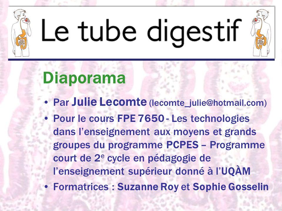 Diaporama Par Julie Lecomte (lecomte_julie@hotmail.com) Pour le cours FPE 7650 - Les technologies dans lenseignement aux moyens et grands groupes du p