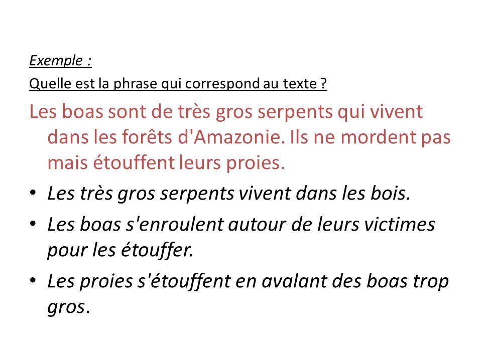 Exemple : Quelle est la phrase qui correspond au texte .