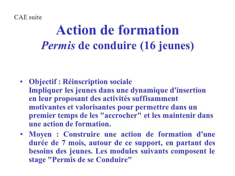 Action de formation Permis de conduire (16 jeunes) Objectif : Réinscription sociale Impliquer les jeunes dans une dynamique d'insertion en leur propos