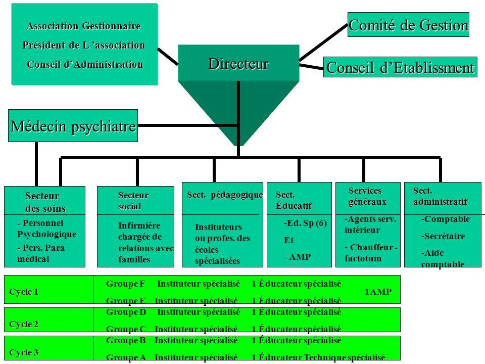 Directeur Comité de Gestion Conseil dEtablissment Association Gestionnaire Président de L association Conseil dAdministration Médecin psychiatre Secte