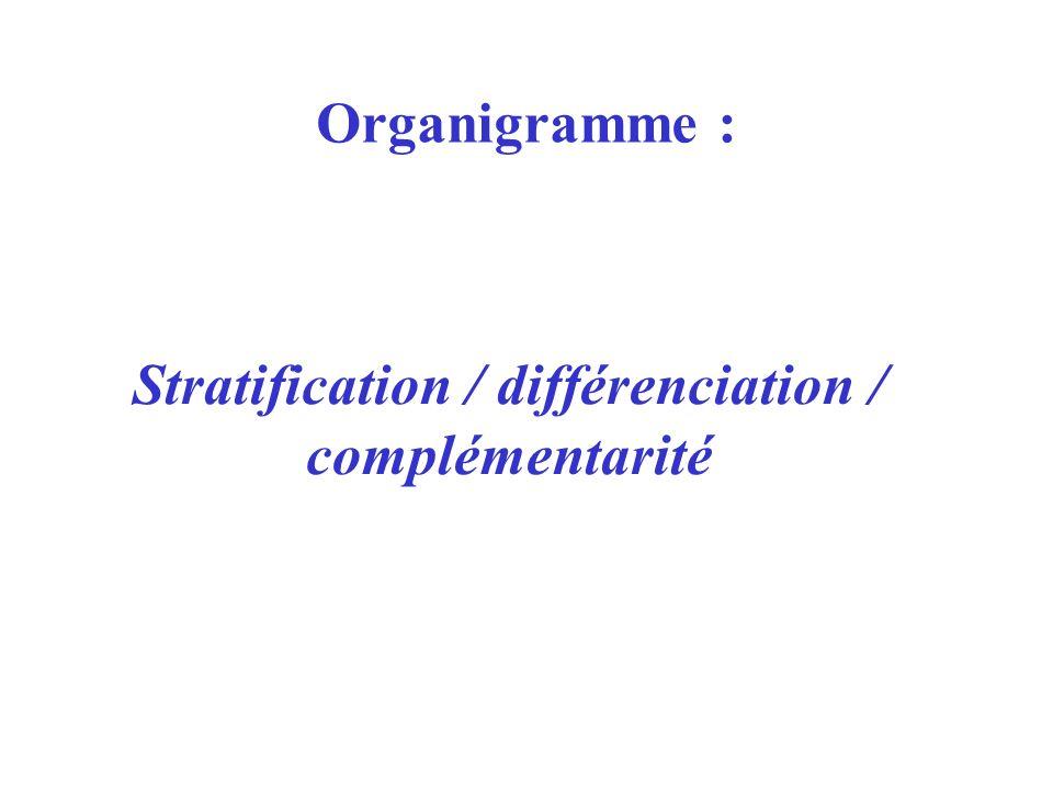 Stratification / différenciation / complémentarité Organigramme :