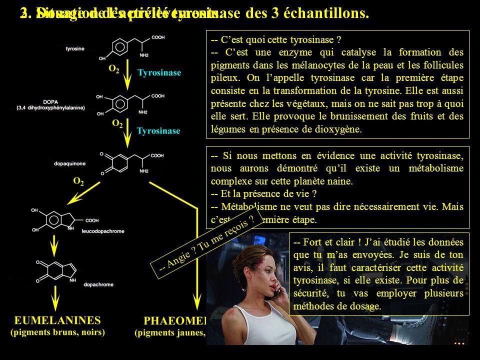 2. Situation des prélèvements.3. Dosage de lactivité tyrosinase des 3 échantillons. -- Cest quoi cette tyrosinase ? -- Cest une enzyme qui catalyse la