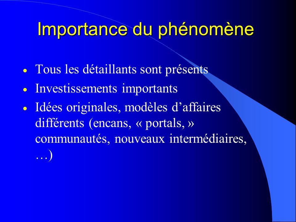 Importance du phénomène Tous les détaillants sont présents Investissements importants Idées originales, modèles daffaires différents (encans, « portal