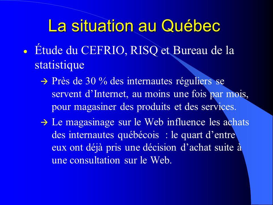 La situation au Québec Étude du CEFRIO, RISQ et Bureau de la statistique Près de 30 % des internautes réguliers se servent dInternet, au moins une foi