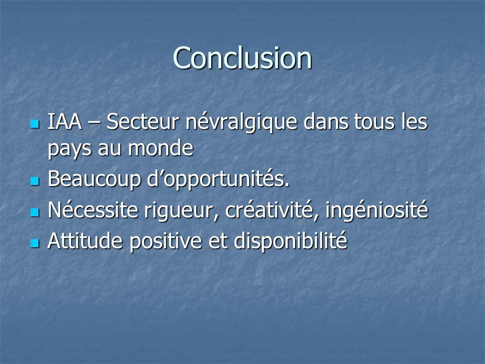 Conclusion IAA – Secteur névralgique dans tous les pays au monde IAA – Secteur névralgique dans tous les pays au monde Beaucoup dopportunités.
