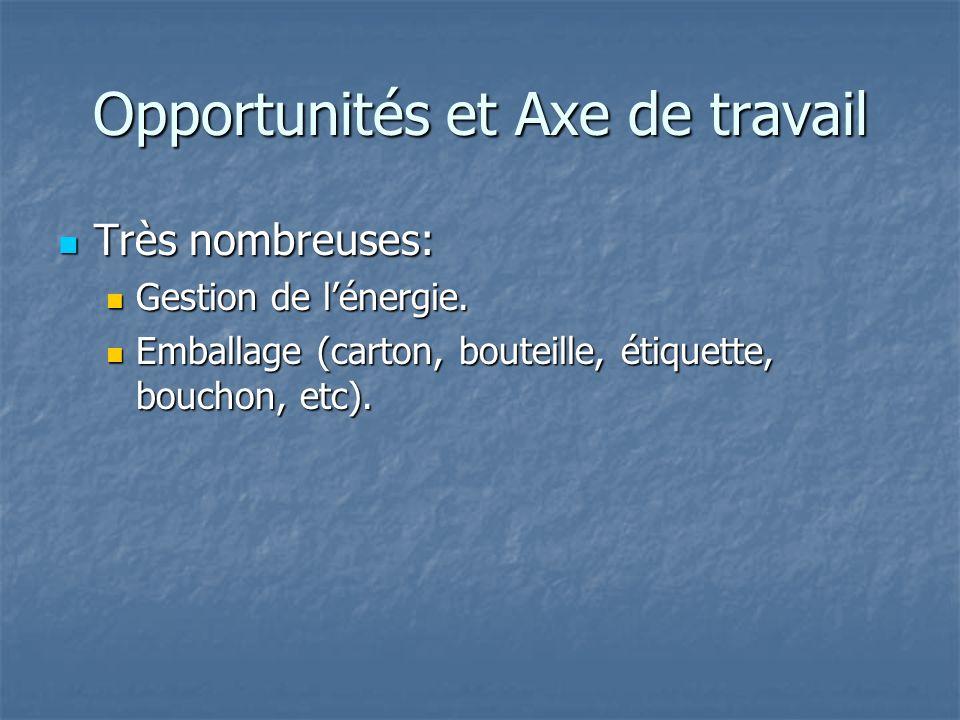 Opportunités et Axe de travail Très nombreuses: Très nombreuses: Gestion de lénergie. Gestion de lénergie. Emballage (carton, bouteille, étiquette, bo