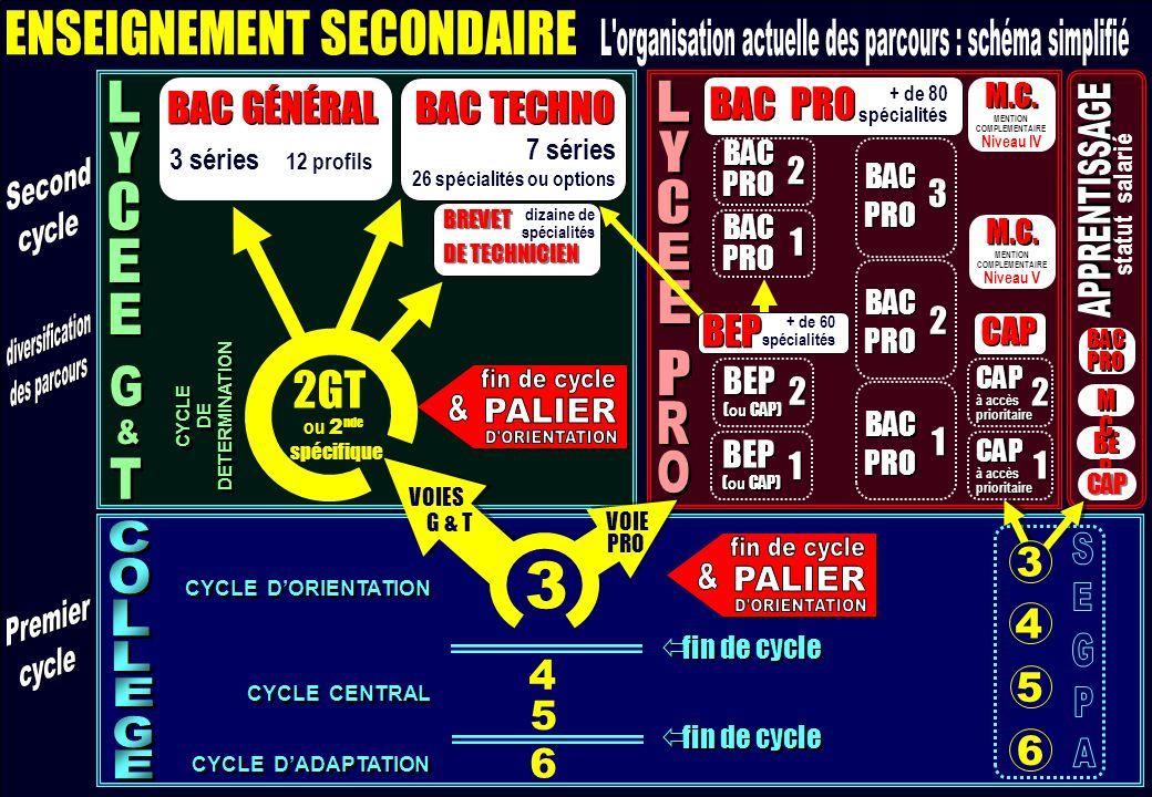 Second cycle : schéma Les flux Les diplômes Se documenter Retour schéma général Second cycle : schéma Les flux Les diplômes Se documenter Retour schéma général
