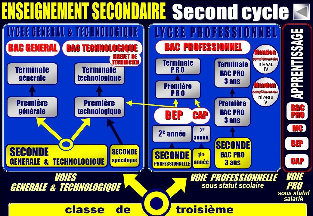 classe de troisième SECONDE PROFESSIONNELLE SECONDE GENERALE & TECHNOLOGIQUE Première générale Terminale générale Première technologique Terminale tec