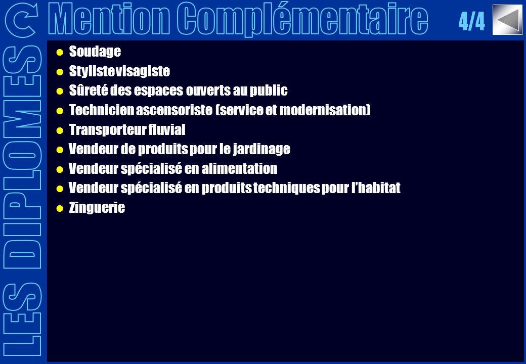 Soudage Styliste visagiste Sûreté des espaces ouverts au public Technicien ascensoriste (service et modernisation) Transporteur fluvial Vendeur de pro