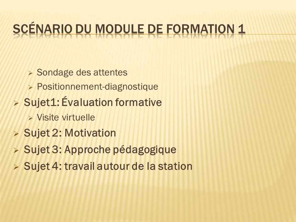 Sondage des attentes Positionnement-diagnostique Sujet1: Évaluation formative Visite virtuelle Sujet 2: Motivation Sujet 3: Approche pédagogique Sujet 4: travail autour de la station