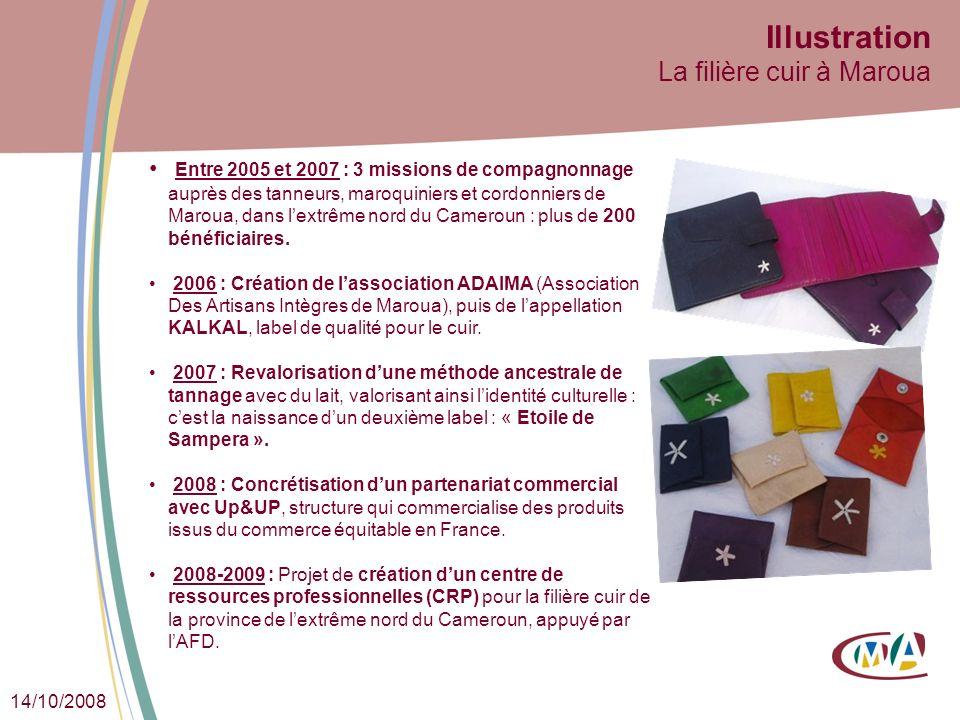 14/10/2008 Illustration La filière cuir à Maroua Entre 2005 et 2007 : 3 missions de compagnonnage auprès des tanneurs, maroquiniers et cordonniers de