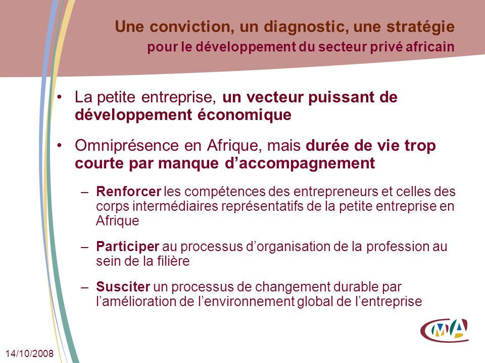 14/10/2008 Une conviction, un diagnostic, une stratégie pour le développement du secteur privé africain La petite entreprise, un vecteur puissant de d