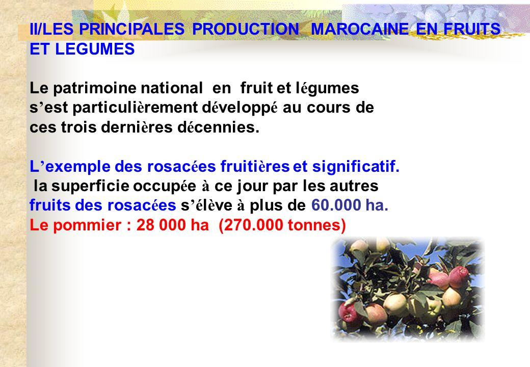 II/LES PRINCIPALES PRODUCTION MAROCAINE EN FRUITS ET LEGUMES Le patrimoine national en fruit et l é gumes s est particuli è rement d é velopp é au cou