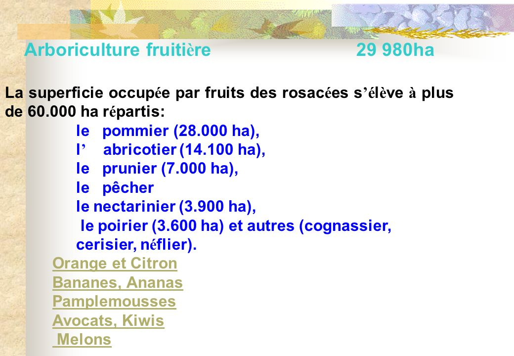 Arboriculture fruiti è re29 980ha La superficie occup é e par fruits des rosac é es s é l è ve à plus de 60.000 ha r é partis: le pommier (28.000 ha),