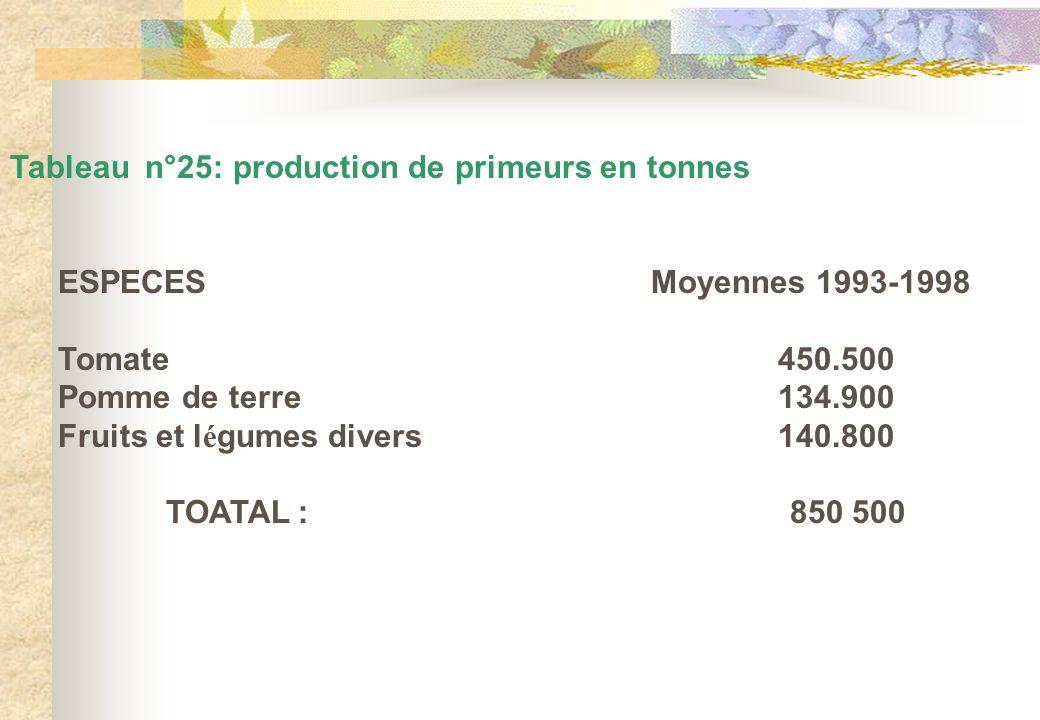 Tableau n°25: production de primeurs en tonnes ESPECES Moyennes 1993-1998 Tomate450.500 Pomme de terre134.900 Fruits et l é gumes divers 140.800 TOATA