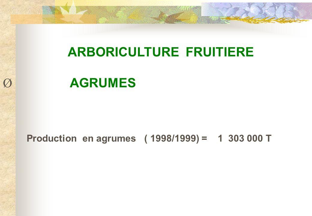 ARBORICULTURE FRUITIERE Ø AGRUMES Production en agrumes ( 1998/1999) = 1 303 000 T