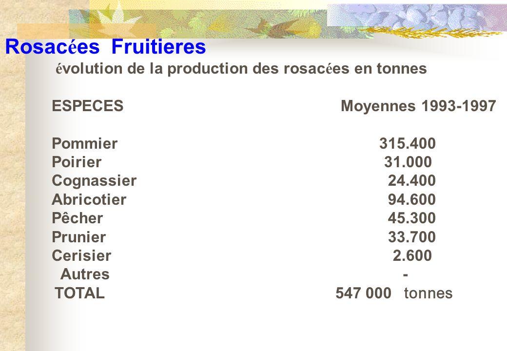 Rosac é es Fruitieres é volution de la production des rosac é es en tonnes ESPECES Moyennes 1993-1997 Pommier315.400 Poirier 31.000 Cognassier 24.400