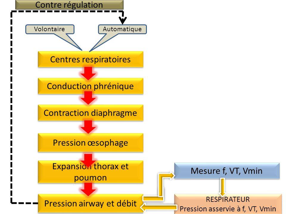 Centres respiratoires AutomatiqueVolontaire Conduction phrénique Contraction diaphragme Expansion thorax et poumon Pression œsophage Mesure f, VT, Vmi