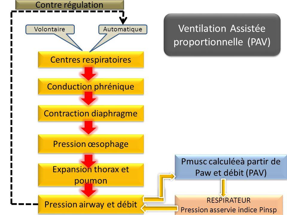 Centres respiratoires AutomatiqueVolontaire Conduction phrénique Contraction diaphragme Expansion thorax et poumon Pression œsophage Pmusc calculéeà p