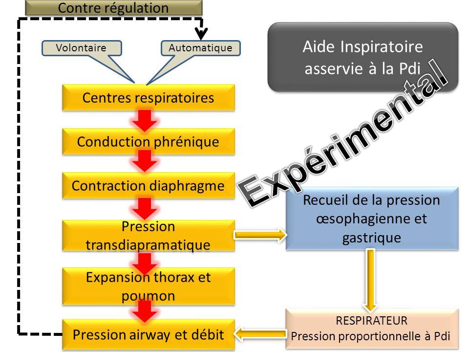 Centres respiratoires AutomatiqueVolontaire Conduction phrénique Contraction diaphragme Expansion thorax et poumon Pression transdiapramatique Recueil