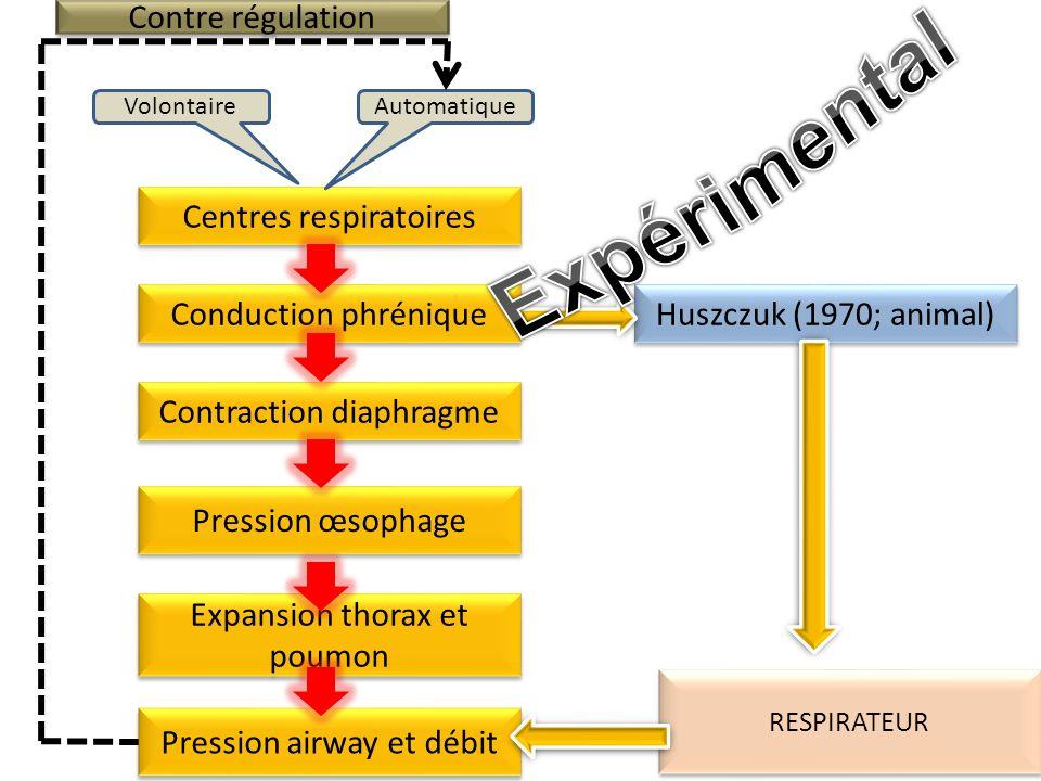 Centres respiratoires AutomatiqueVolontaire Conduction phrénique Contraction diaphragme Expansion thorax et poumon Pression œsophage Contre régulation Pression airway et débit Huszczuk (1970; animal) RESPIRATEUR