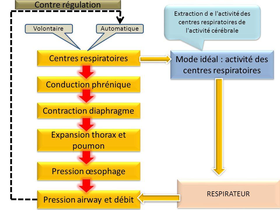 Centres respiratoires AutomatiqueVolontaire Conduction phrénique Contraction diaphragme Expansion thorax et poumon Pression œsophage Mode idéal : activité des centres respiratoires Contre régulation Pression airway et débit RESPIRATEUR Extraction d e l activité des centres respiratoires de l activité cérébrale