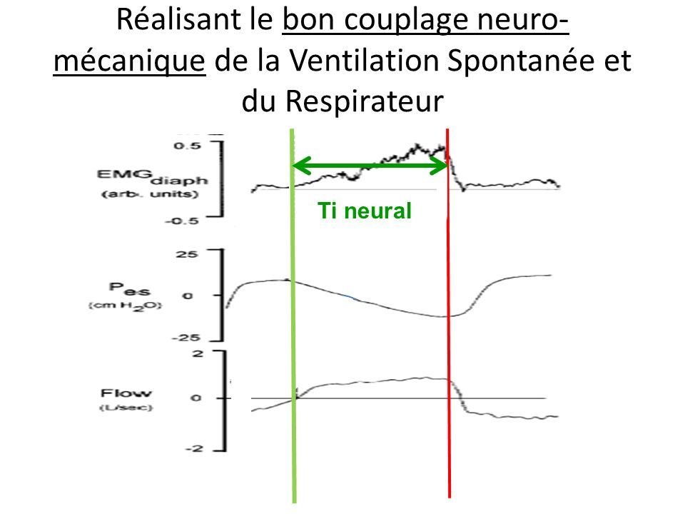 Centres respiratoires AutomatiqueVolontaire Conduction phrénique Contraction diaphragme Expansion thorax et poumon Pression œsophage Mesure un indice de Pinsp P O,1 Mesure un indice de Pinsp P O,1 Contre régulation Pression airway et débit RESPIRATEUR Pression asservie à P 0,1 RESPIRATEUR Pression asservie à P 0,1