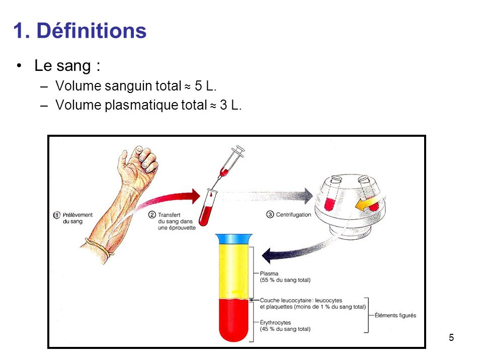 1. Définitions Le sang 6